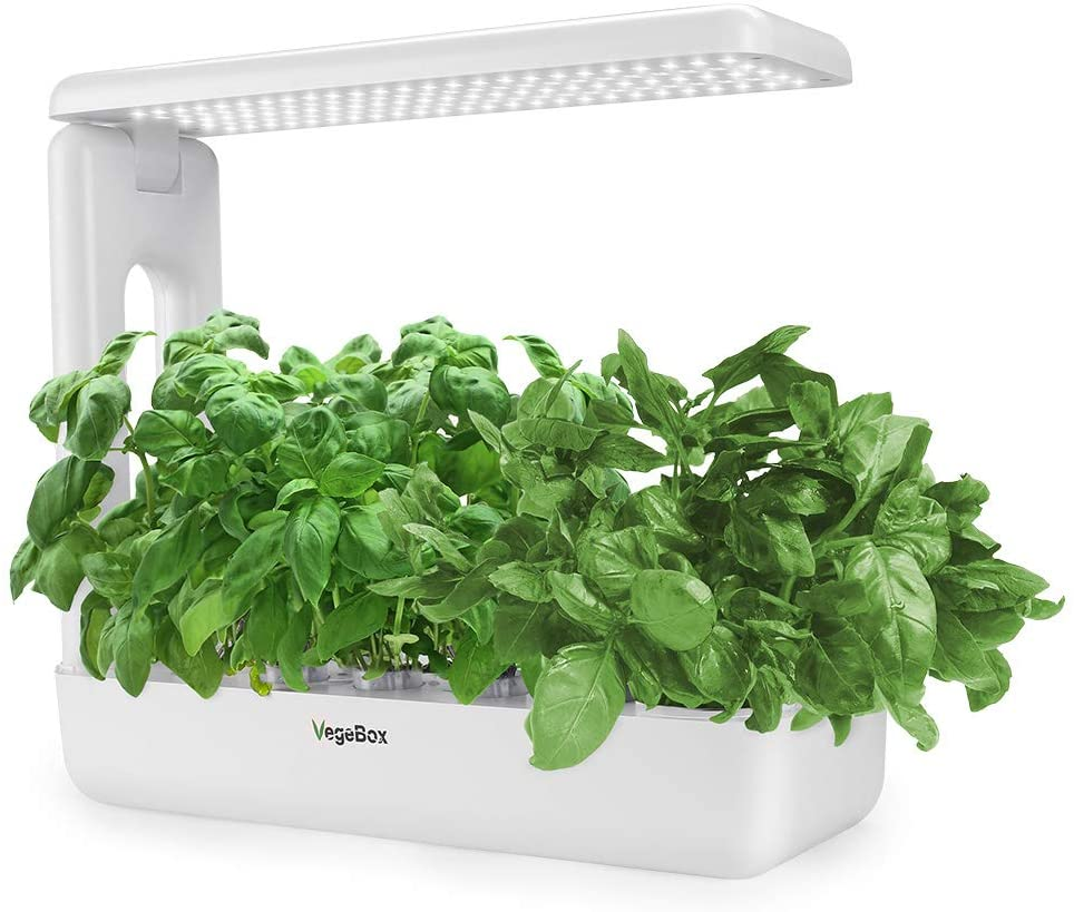 The 3 Best Indoor Hydroponic Gardening Systems For Food - VegBox